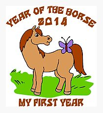 Born Year of The Horse Baby 2014 Photographic Print