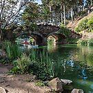 Rustic Bridge, Golden Gate Park by James Watkins