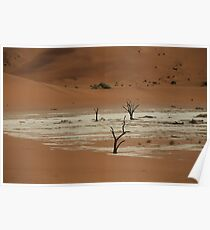 Dry desert deserted Poster