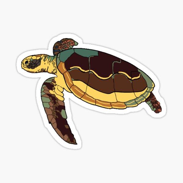 Couleurs de tortue Sticker