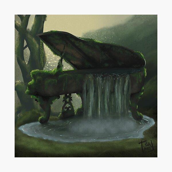 Nature Waterfall Piano Photographic Print