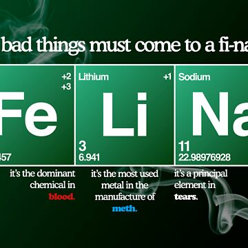 FeLiNa Poster (Breaking Bad) by Aguvagu