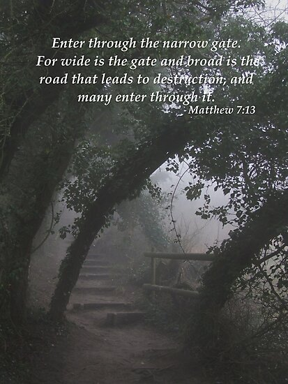 The Narrow Gate by Samantha Higgs