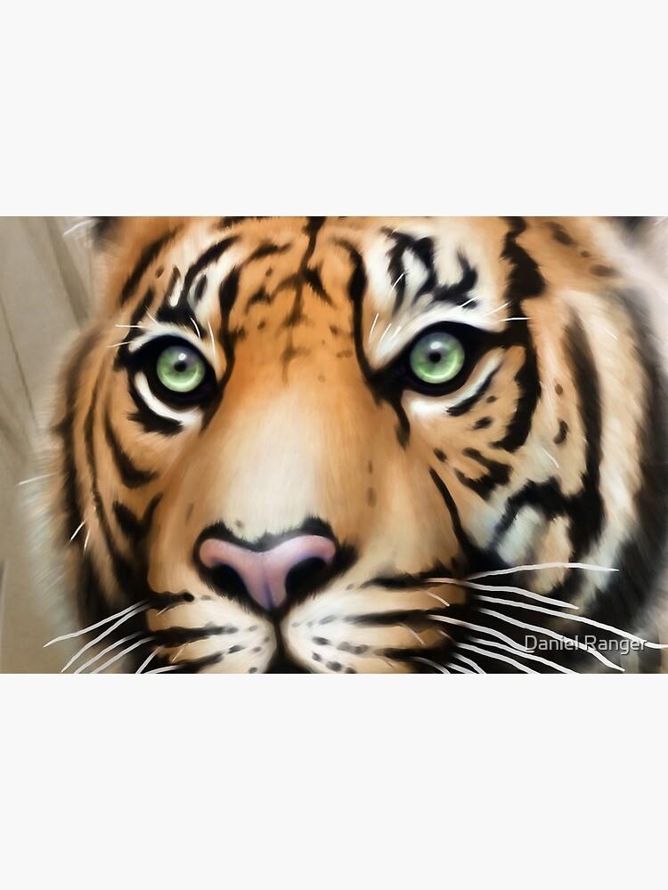 Tiger by Dragon84