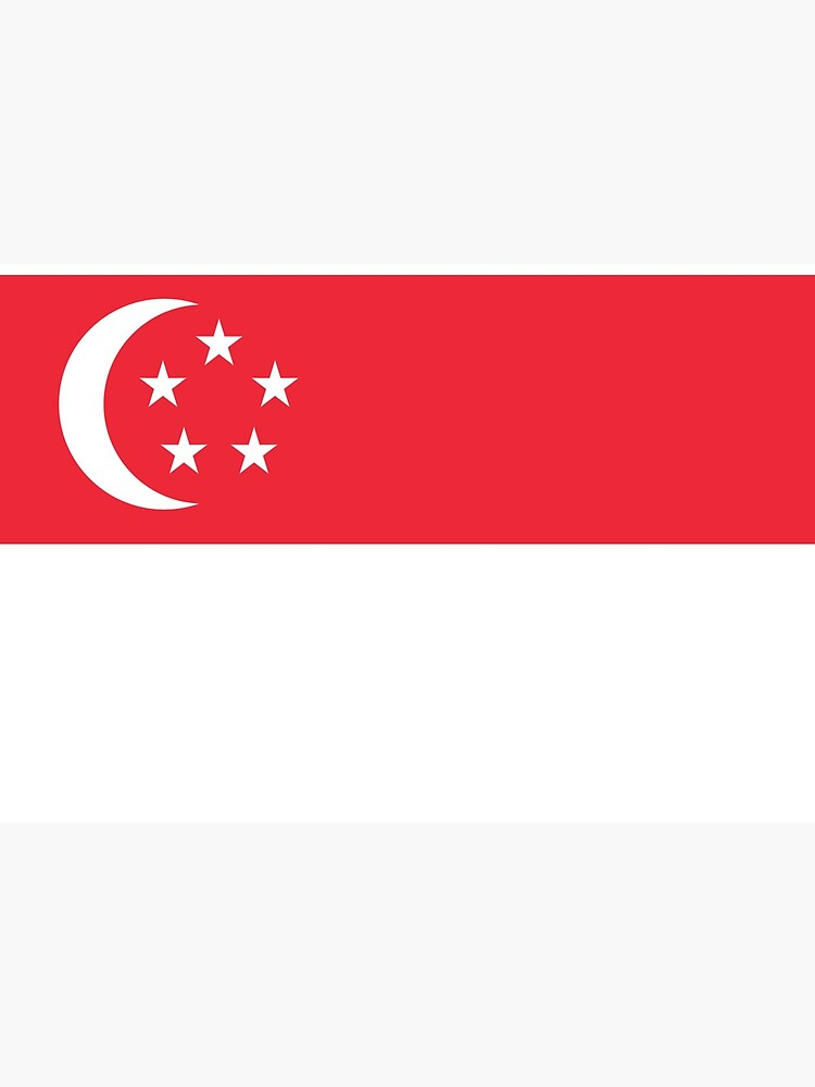 Singapore Flag Face Mask by ds-4