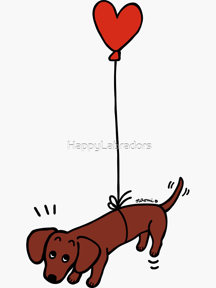 Red Smooth Haired Dachshund Floating in the Air by HappyLabradors