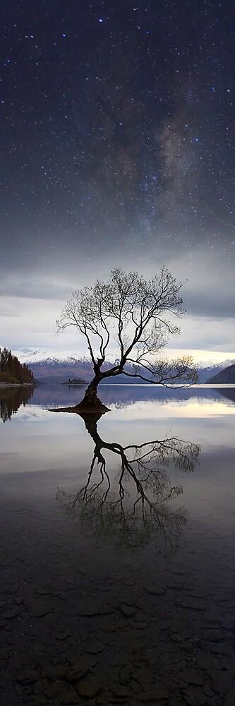 Wanaka Dreaming by Maxwell Campbell