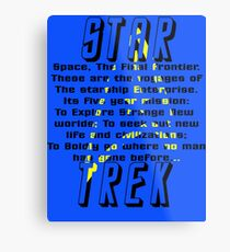 Space! The Final Frontier Metal Print