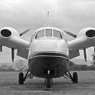Piaggio P-166S Albatross  by Lebogang Manganye