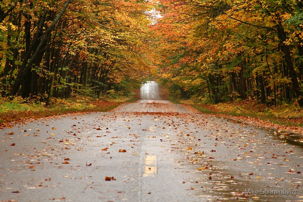 Autumn Road by Mike Sonnenberg