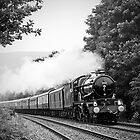 The Welsh Marches Express by Stephen Liptrot