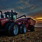 Sunset Corn Harvest by Steve Baird