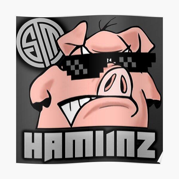 TSM Hamlinz - Fortnite Poster