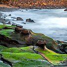 Rocks along the Shore by John Sharp