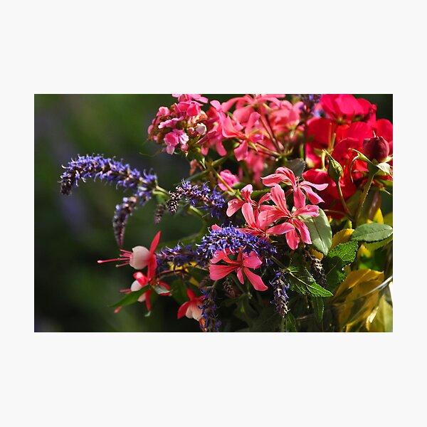 Riot of Color Bouquet Photographic Print