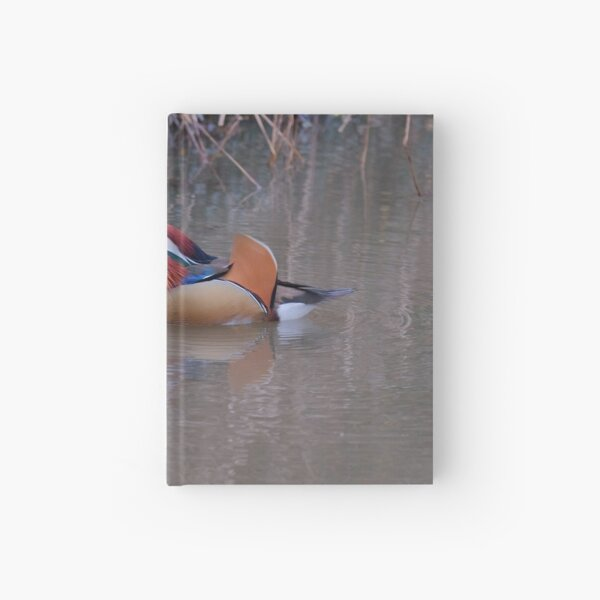 Aix galericulata Hardcover Journal