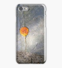 autumn 1 iPhone Case/Skin