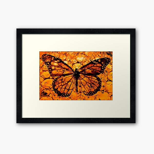Butterfly in Amber Photomontage Framed Art Print