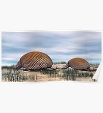 Glyptodon Poster