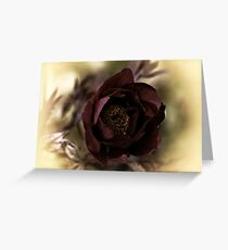 Velvet Dreams .... Greeting Card