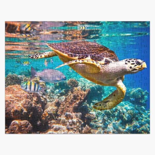Sea Turtle and Fish Puzzle Jigsaw Puzzle