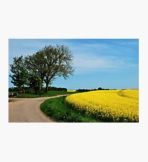 For all who love yellow Photographic Print