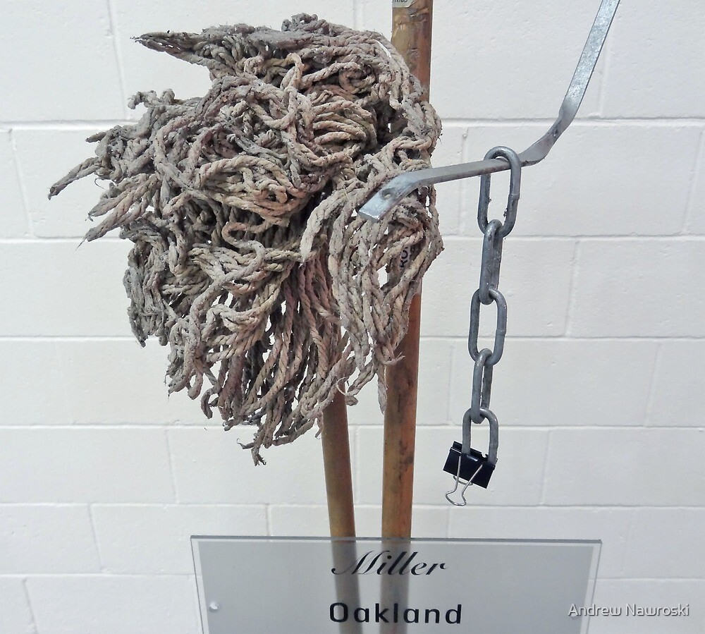 Mop Prop 2. by Andy Nawroski