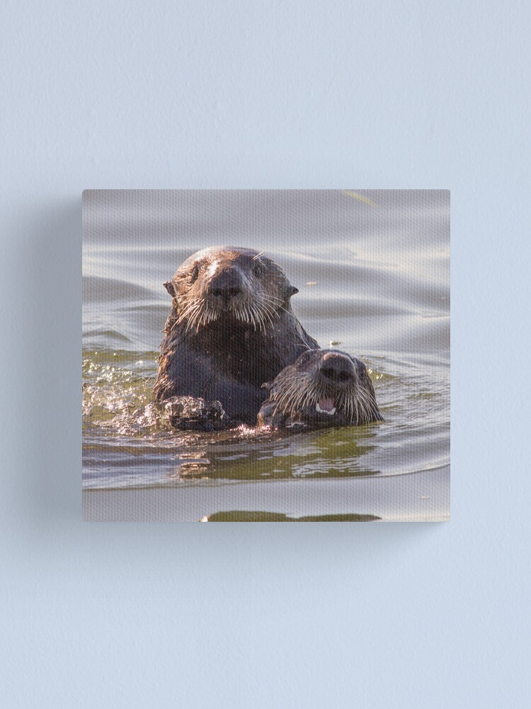 Alternate view of Sea otters of California Canvas Print