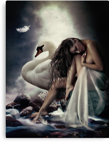 Leda and the Swan by Shanina Conway