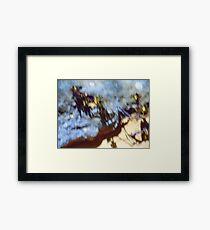 Rock and desert flowers, Pinnacles, Nambung Framed Print