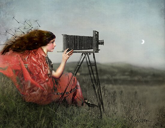 The Observer by Catrin Welz-Stein