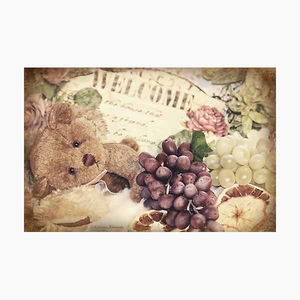Soft little bear Photographic Print