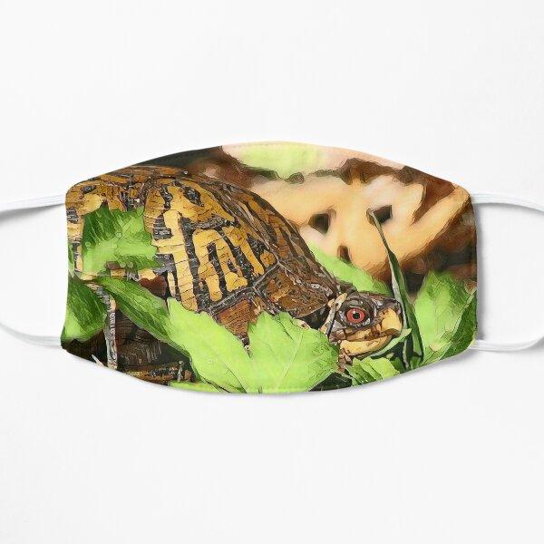 Eastern Box Turtle Flat Mask
