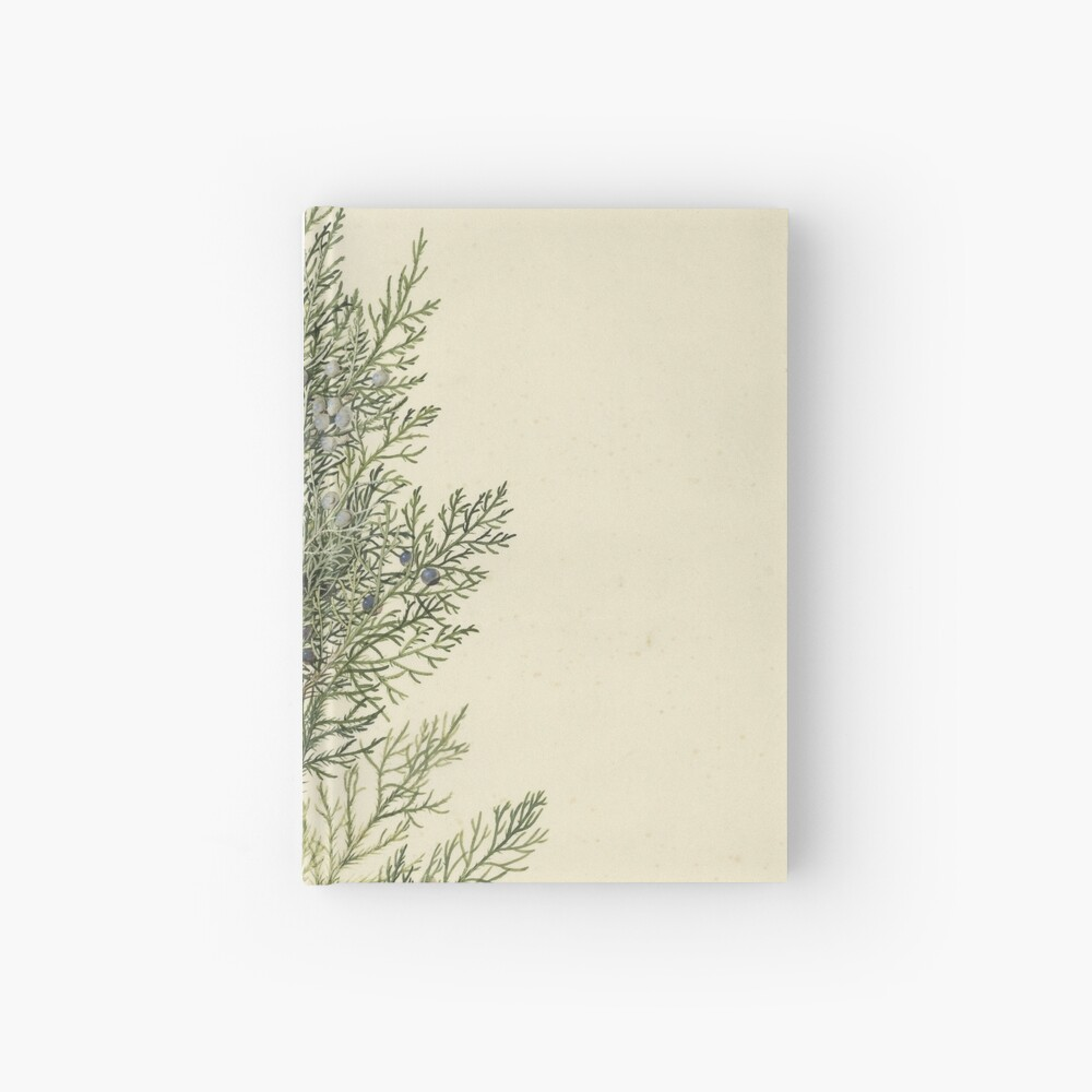 Botanical Juniper Hardcover Journal