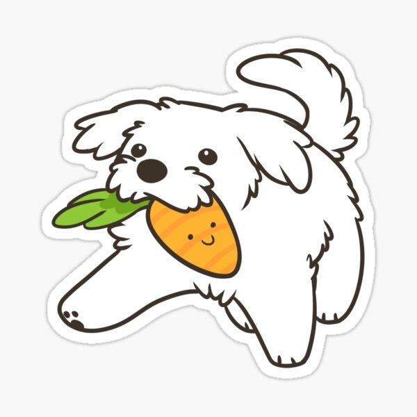 Maltese puppy Sticker