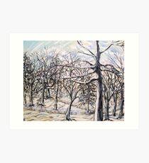 Beech wood in snow Art Print
