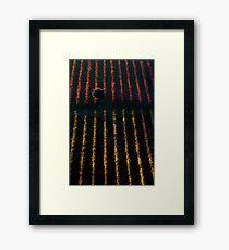 Autumn vineyard at sunset Framed Print