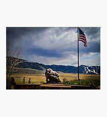 American Bear Photographic Print