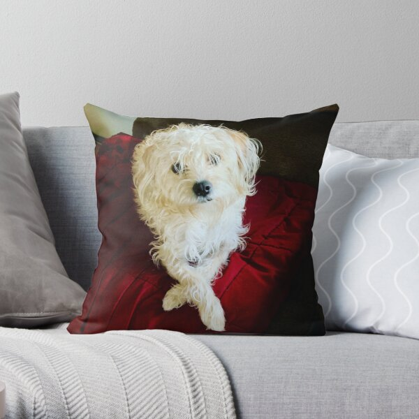 A Four-Legged I L♥️VE You Throw Pillow
