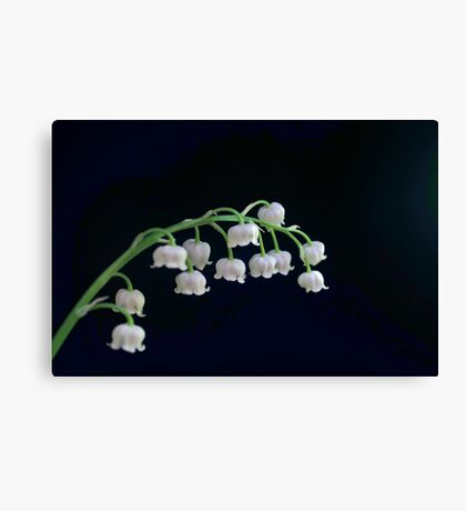 Mum's Favourite Canvas Print