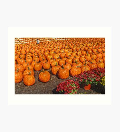 It's A Sea of Pumpkins Art Print
