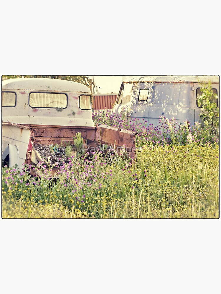 Wrecks and Weeds #1 by AmyesPhotograph