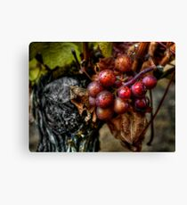 The Crown Of Life ~ Grapes ~ Canvas Print
