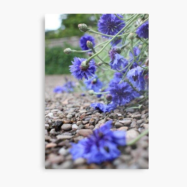 Garden Blooms Metal Print