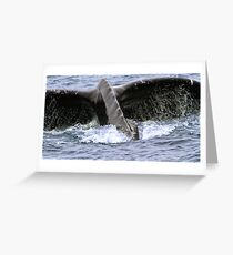Dive ! Greeting Card