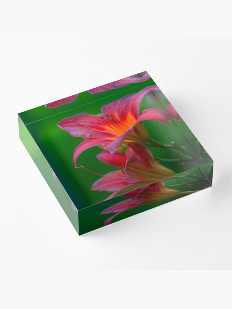 Alternate view of The beloved Lily by Yannis Lobaina  Acrylic Block