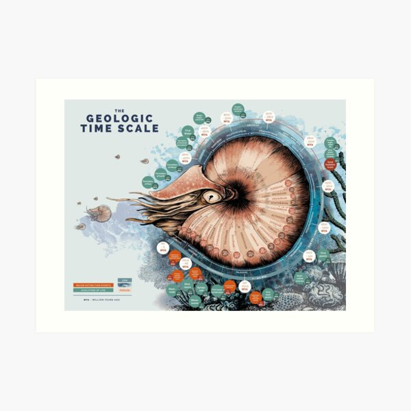 The geological time scale  Art Print