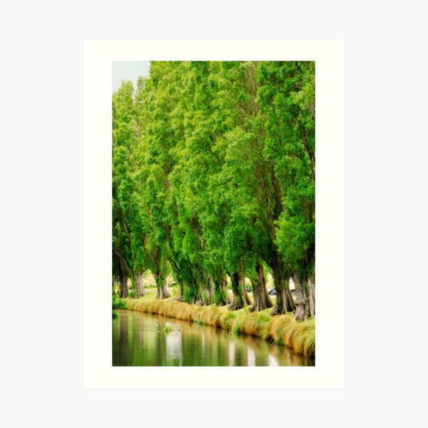 Standing by the Avon - Christchurch, New Zealand Art Print
