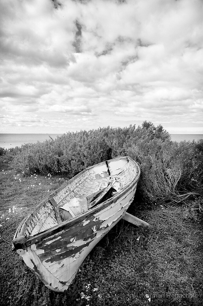 Fishing Season is Closed - Werribee by Norman Repacholi