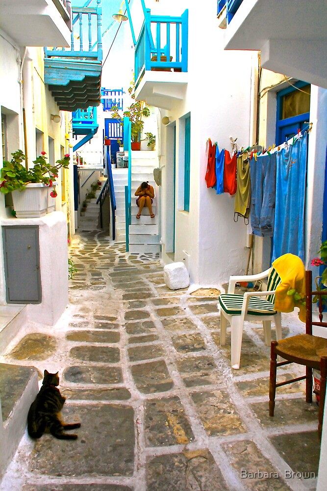 Life on Mykonos by Barbara  Brown